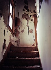 Abandoned Stairway (MattA74) Tags: 120 mamiya mediumformat kodakportra400 mamiya645protl mamiyasekor150mmf35 unicolorc41