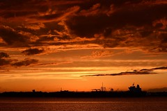 Ship on the Horizon - on the Delaware River (dianealdrich - Please read my updated profile) Tags: sky industry beautiful weather silhouette june clouds contrast river boats lights golden boat photo newjersey spring ship view nj highcontrast scene photograph transportation riverfront goldensunset dramaticsky glimmer photoart highlight goldenhour riverview shimmer delawareriver digitalphotography fineartphotography 2016 philadelphiainternationalairport goldensky goldenclouds springscene beautifulscene westdeptford riverwinds goldenreflection silhouettephotography dramaticscene dianealdrich dlaldrich aviewfromnewjersey goldenskyscape photobydlaldrich shiponthedelaware acrosstheriverfromtheairport
