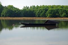 Bouchemaine (Maine-et-Loire) (sybarite48) Tags: france rio ro river boot boat barca barco fiume maine rivire bateau fluss brace  d  maineetloire rivier nehir tekne   rzeka  bouchemaine    toue  touecabane