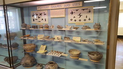 Pottery shapes and uses display in the museum