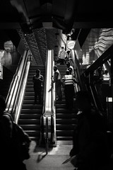 Controlled (Miguel Da Silva Photography) Tags: city amsterdam centraal station streetphotography streets train police polizie blackandwhite bnw monochrome persons people portraiture portrait