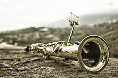 Jazz in Cilento (gianliuk91) Tags: saxofono sax music italy cilento laurino jazz