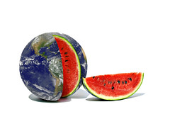 let's talk about geology (brescia, italy) (bloodybee) Tags: 365project earth world globe planet watermelon fruit vegetables food slice cut geology humor fun stilllife nationalwatermelonday august 3 summer season explore