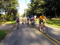 GOPR8318 (EddyG9) Tags: mstour150 ms tour training ride covington abita outdoor cycling cyclists bicycle louisiana 2016 paceline gopro hero3 teamsmiley rookie riders