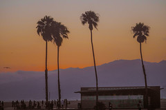 855125085025152 (masharova) Tags: santamonica santa monica losangeles la california ca masharova