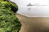 IMG_3939 (Aaron Sesker) Tags: canon 6d 1635 sf san francisco sanfrancisco ocean beach oceanbeach water rocks rock nd neutral density filter longexposure long exposure fog foggy mist misty spray