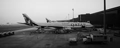 Hamad International Airport A7-AEG Qatar Airways Airbus A330-302 (Swiss.piton (B H & S C)) Tags: travelerphotos airport dmcg6 lumixg6l14mm25 panasoniclumixlovers panasonic lumix geripitonbike microfourthird fourthirdsphotography m43 14mm schwarzweissfotografie blackwhite bw pano panorama panoramic plane dreamliner787 a7aegqatarairwaysairbusa330302 doha flicker schweizerphotographen swissamateurphotographers clickcamera schwarzundweiss blackandwhite noiretblanc biancoenero noiretblance  black white mono bnw
