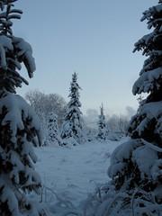 Kuopio/Huuha (Eva0206) Tags: winter finland talvi kuopio joulu 2014 huuha