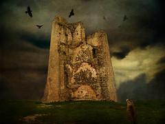 IMG_0982 (pinktigger) Tags: italy castle texture halloween birds cat ruins feline italia frangipane crows friuli sgtpepper coia tarcento therubyawardsinvitation
