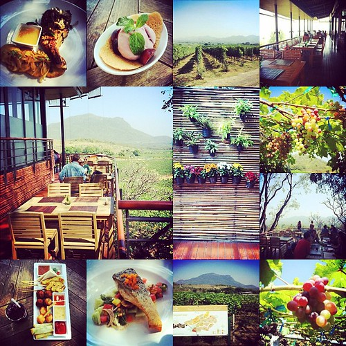 Hua Hin Hills Vineyard #InstaMagApp @fotorus_official