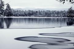 Lower Saranac (Valerie Manne) Tags: travel winter lake snow reflection nature landscape adirondacks explore saranac