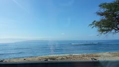 20141109_093344 (dntanderson) Tags: hawaii maui 2014 november09