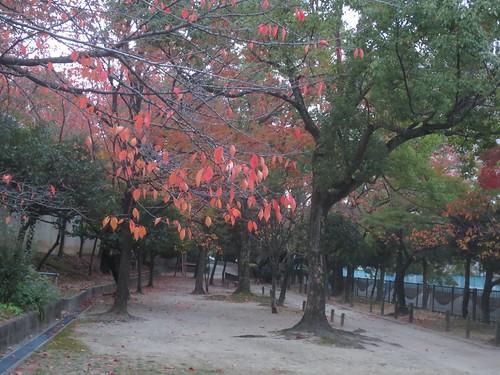 友呂岐公園