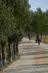 Asia Highway 6 (multituba) Tags: northkorea dprk yanghwa southhamgyong