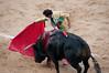 100604_Corrida Toros Ventas_068 (Tranbel) Tags: toros ventas elfandi