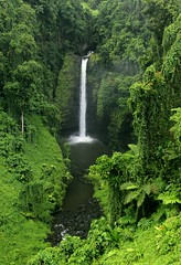 985048762087279 (alleyntegtmeyer7832) Tags: travel green nature vertical landscape photography waterfall jungle tonga 1k upolu