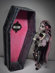 Gia and her coffin! (roxxdolls) Tags: skulls skeleton wings ooak gargoyle manicure coffin rochelle repaint reroot goyle faceup monsterhigh monsterhighcustom giacoffin roxxdolls