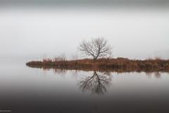 Fog (Mr_Samson) Tags: pictures new morning autumn usa lake reflection nature fog canon landscapes nc background lakes northcarolina hampshire carolina fogg canonef28135mm naturelandscapes ncstateparks lakecrabtreecountypark canon7d ncpark