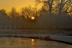 Sunrise (.:Phillthy:.) Tags: nature dawn nikon dunham massey d3100