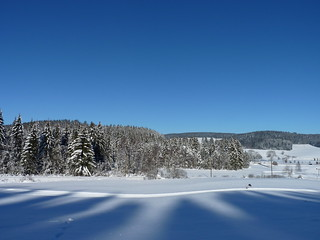 Snow and blue skies near Hinterzarten and Titisee, Black Forest, Baden, Germany