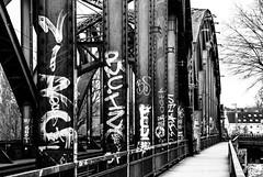 Frankfurt: Deutschherrnbrücke // Deutschherrnbridge (brongaeh) Tags: street city railroad bridge urban bw white streetart black art architecture train germany subway deutschland graffiti am europa europe cityscape hessen view 33 frankfurt district sony main style rail railway pedestrian a33 scene gritty stadt architektur sw block alpha passage brücke viewpoint financial schwarz sal ostend slt frankfurter sachsenhausen eisenbahnbrücke mainhattan underbridge stadtansicht weis deutschherrnufer deutschherrnbrücke finanzzentrum sal16105 16105 slta33 hafenpark