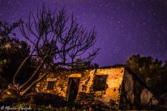 Star Fantasy (Marios Krokidis) Tags: sky house tree night stars nikon d3200