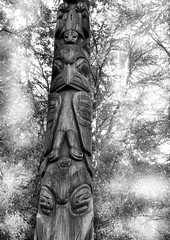 Made from a tree, Seattle Center park totem pole (nolleone--Nol, like Christmas) Tags: bw tree monochrome tribal carving totempole mystical seattlecenter nativeamericanart htt treetuesday pacificnorthwestart pnwart nearthespaceneedle nearchihulyglassgarden