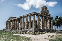 DSC_9069 (Dan Kistler) Tags: paestum italy velia greek ruins temples trains