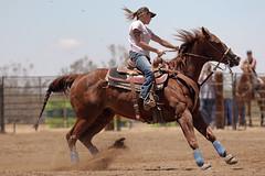 Fly-N-High Ranch (Tackshots) Tags: california horse tattoo cowgirl applevalley barrelracing nbhaca18