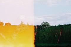 (resmiff) Tags: colour film 35mm canon bristol canona1 colourfilm