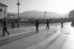 Fra maana de invierno (Miguel.Herrera) Tags: maana fro blancoynegro invierno 1750mm
