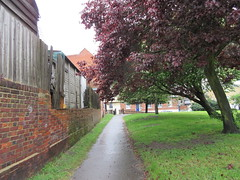152:365, 2016, On the footpath IMG_8401 (tomylees) Tags: project may tuesday churchyard 365 essex 31st braintree 2016
