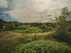 Overgrown, 2016.06.17 (Aaron Glenn Campbell) Tags: abandoned overgrown graffiti ruins pennsylvania decay courtyard faded vegetation overgrowth nepa fogotten actioncam luzernecounty concretecity hanovertownship instagramapp uploaded:by=instagram snapseed wifitransfer iphone6plus xiaomiyi yiactionapp