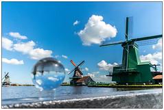 Zaanse Schans molen glazenbol (voorhammr) Tags: gras zon zaanseschans zaandam molens 2016 vakwerk huisjes blauwelucht jolandakraus