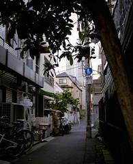 (  / Yorozuna) Tags: japan tokyo alley backalley alleyway analogphotography  mamiyarb67      akebonobashi   shinjukuward filmscanning mamiyarb67professionals  wakamatsukawada   mamiyasekorc138f90mm