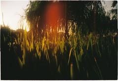 000073 (nhunhien) Tags: friends sunset summer lake sunshine hanoi h hoan kiem h ma hon nng kim hanoiwandering