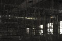 Schwarzkaue (Nic2209) Tags: building heritage abandoned architecture germany deutschland europa flickr die industrial kohle nacht alt rusty route trail event architektur alemania frderturm rost der bauwerk rag industrie ruhr ruhrgebiet extra corrosion hamm rostig zeche verlassen metropole stahl eine westfalen eisen ruhrpott 2016 stillgelegt verfall industriekultur vergessen bergwerk hammerkopfturm kulturerbe kulture lostplace allemange abandoment steinkohle ausrangiert schicht waschkaue bergwerkost spielorte schwarzkaue weiskaue zecheheinrichrobert nic2209 nikond7200 extraschicht2016
