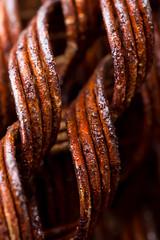 Rusty curls (KateKab) Tags: macro texture photo rust walk curl monday lockhart