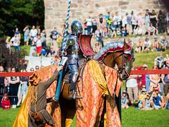 """Lance, quick!"" (markvall) Tags: turku hevonen keskiaika linna ritari turnajaiset horse knight castle medieval tournament jousting"