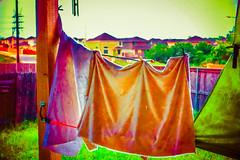 20150622-DSC02062.jpg (mcreedonmcvean) Tags: 20160717 firstlight laundryonthebackporch