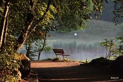 La panchina  un luogo di sosta per ......... (Betti52) Tags: lago di lavarone trentino alto adige italia