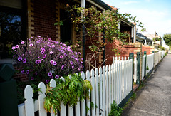 Just a Fence (PhotosbyDi) Tags: street fence streetscene queenscliff hff nikond600 happyfencefriday nikonf282470mmlens