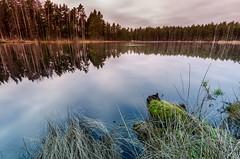 emeru nacionlais parks, Latvia (Jakub Jerabek) Tags: nature rural landscape ancient scenery europe view baltic latvia tokina eastern ultrawide baltics tokina1116mm d5100 nikond5100