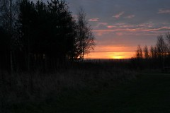 Sunrise from sutton manor forest (Chris Pritch) Tags: sunrise nikon sthelens suttonmanor d3100