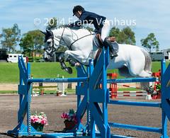 141214_CSI-W_7377.jpg (FranzVenhaus) Tags: horses jumping sydney australia event nsw aus equestrian siec csiw worldcupjumping
