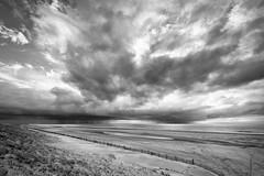 Beach in b/w (robvanderwaal) Tags: sea sky bw cloud seascape beach netherlands rain clouds strand golf skyscape landscape shower blackwhite waves zwartwit nederland wolken wave zee lucht regen maasvlakte bui landschap zw wolk 2014 golven maasvlakte2 rvdwaal robvanderwaalphotographycom