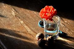 Aspettando il primo caffè (fiumeazzurro) Tags: chapeau fiori bellissima anthologyofbeauty sailsevenseas