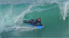 3838 (AJVaughn.com) Tags: ocean flowers seagulls beach water birds alan temple photography james surf pacific surfer board wave lajolla pelican surfboard pacificbeach vaughn cailfornia alanjames dirfing ajvaughn alanjvaughn