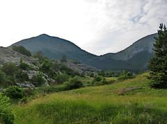 Mountain meadow near Cetinje, Montenegro (Paul McClure DC) Tags: scenery balkans montenegro crnagora cetinje june2010