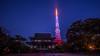 Tokyotower (akemi one) Tags: japan tokyo nightscape tokyotower